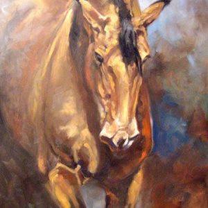 imagenes de caballos finos
