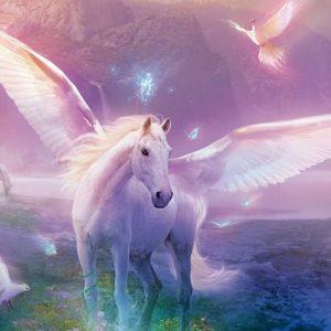 imagenes de unicornios reales