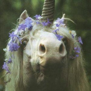 imagenes bonitas de unicornio