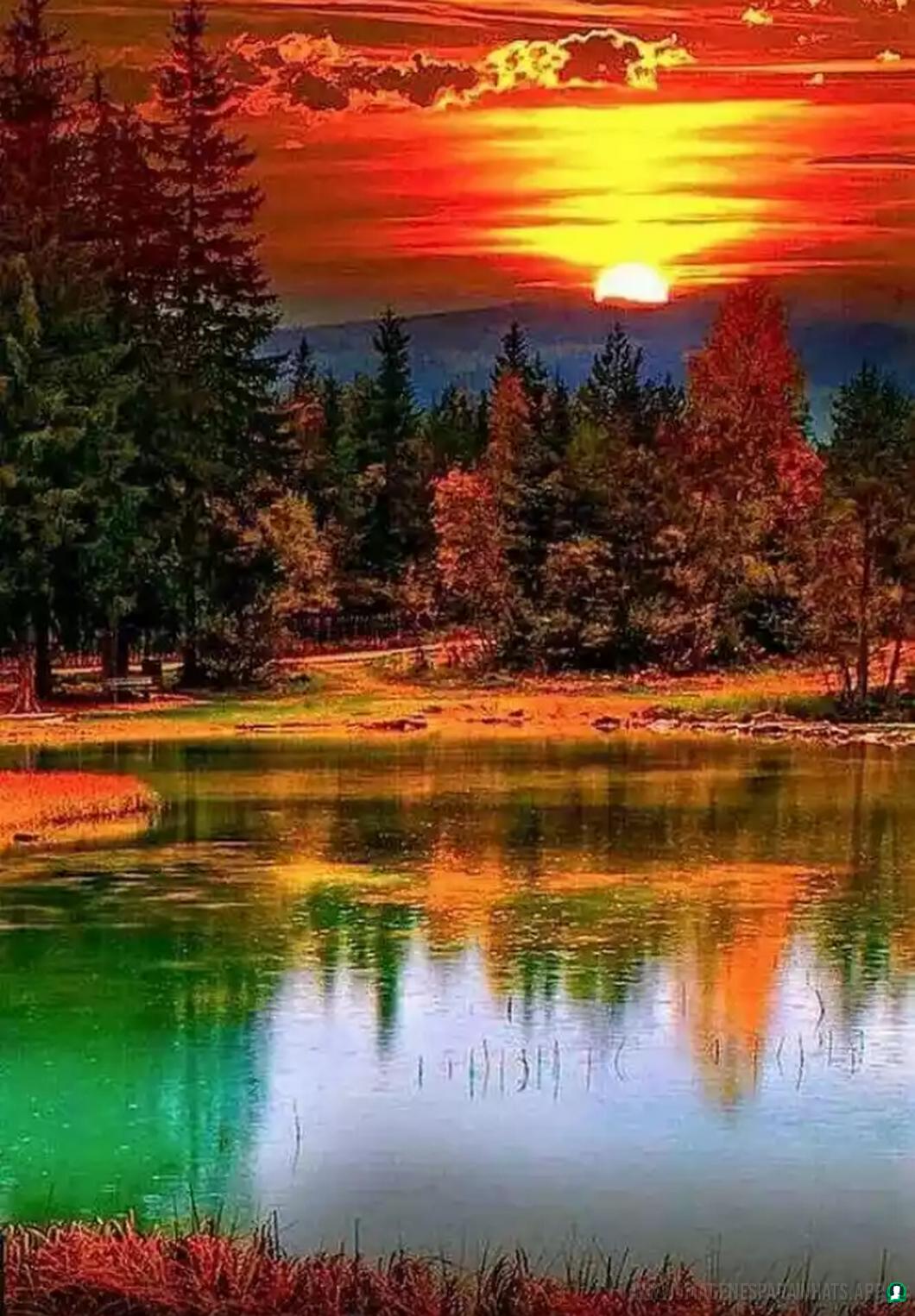 Imagenes-de-paisajes-44