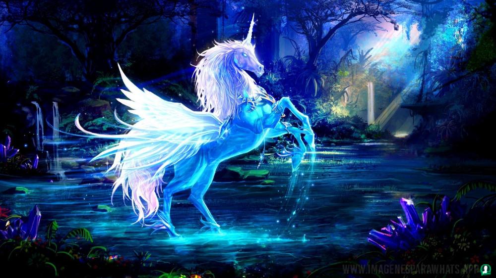 imagenes-de-unicornios (24)