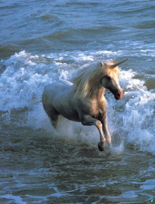 imagenes-de-unicornios (123)