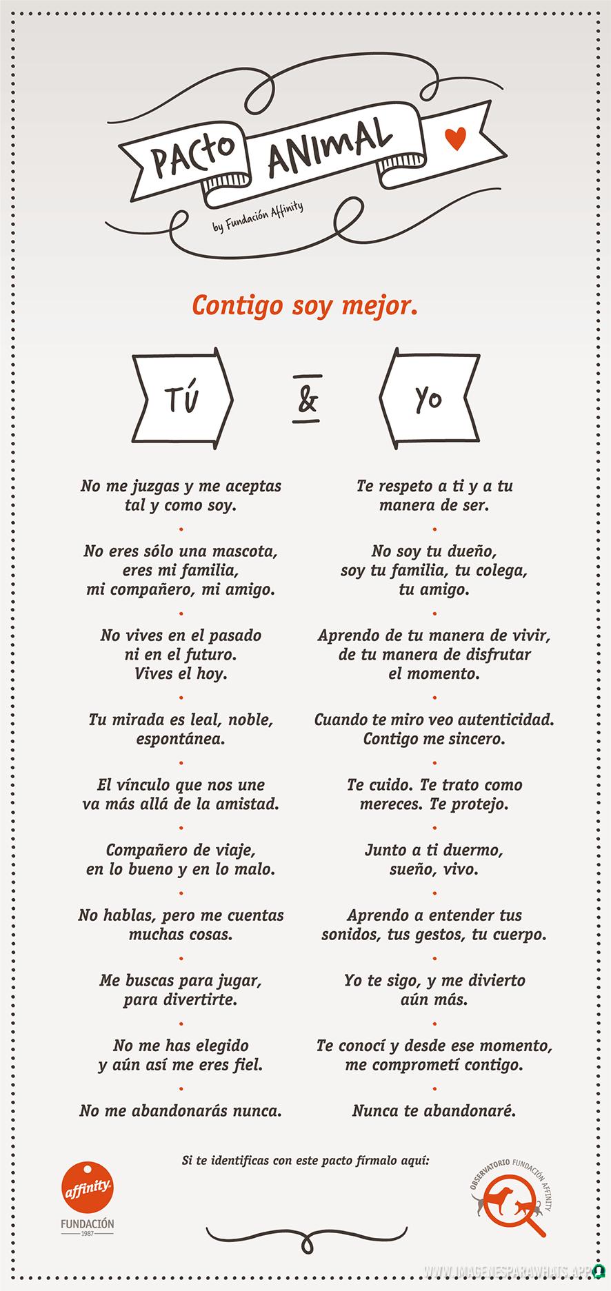 Frases-de-perros-10