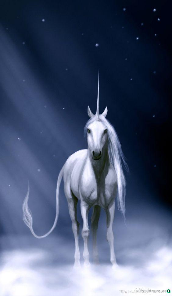 imagenes-de-unicornios (13)