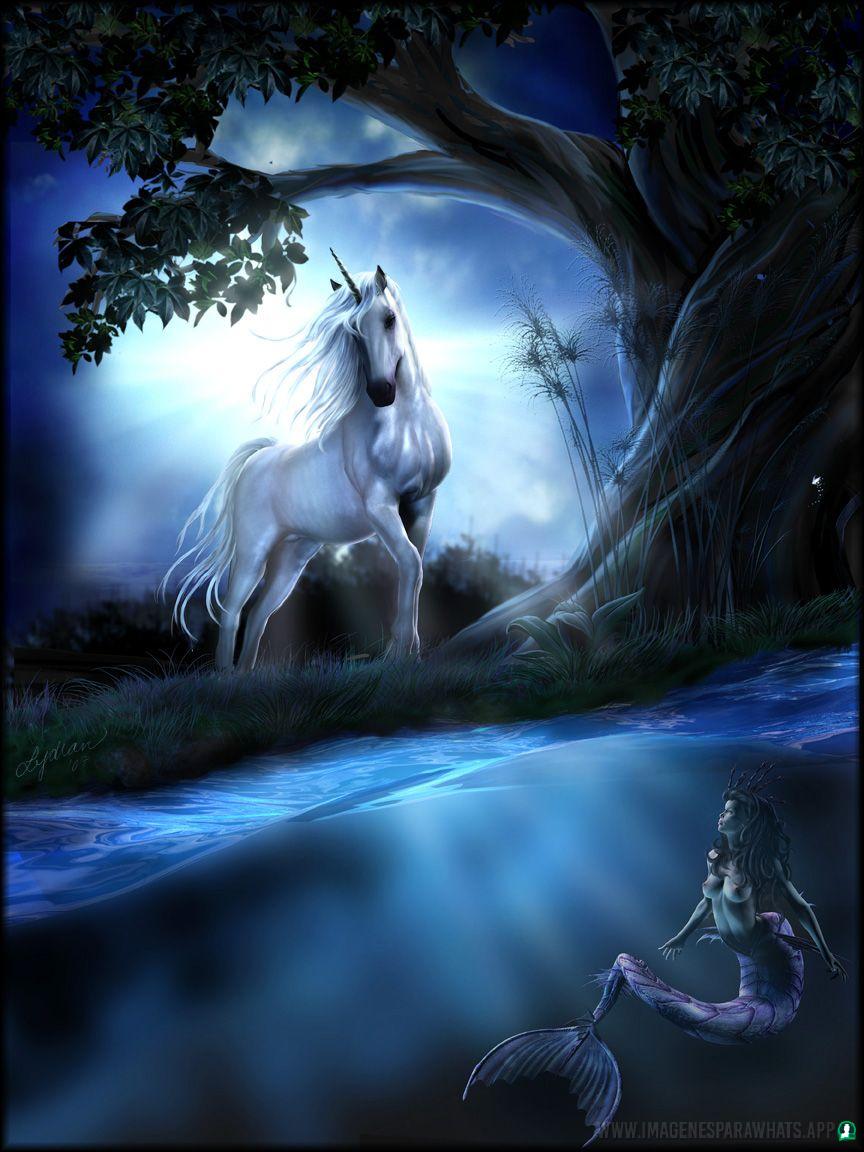 imagenes-de-unicornios (9)