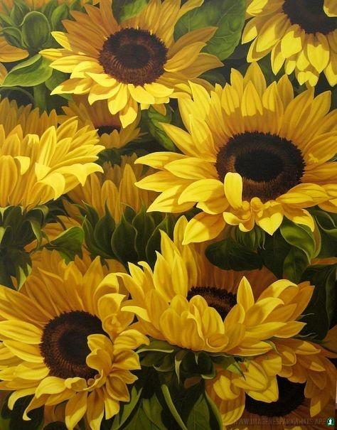 Flores-con-frases-60