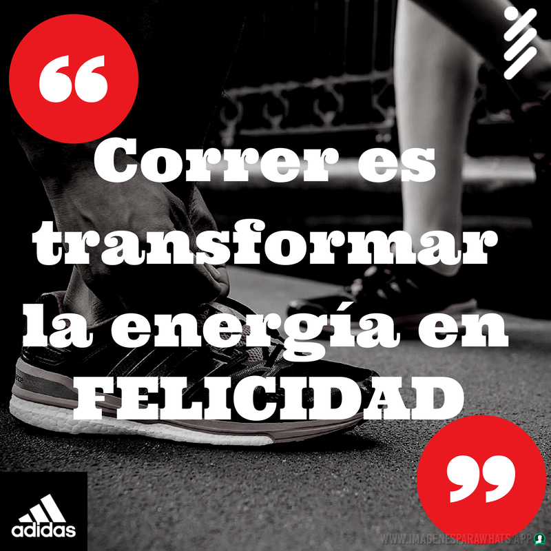 Frases-consejos-74