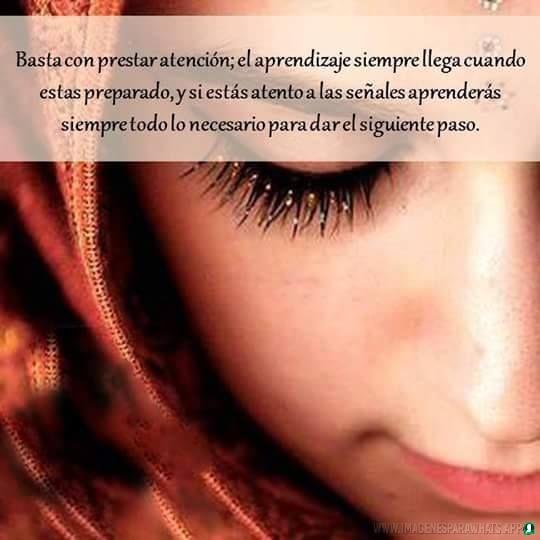 Frases-verdaderas-14