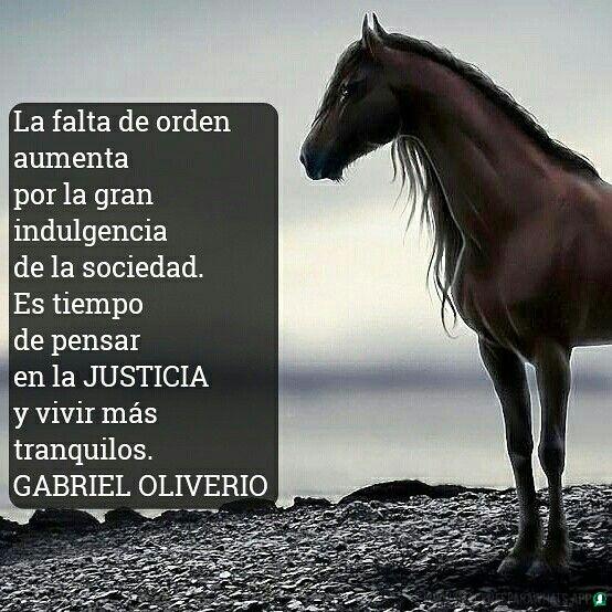 Imagenes-de-caballos-106