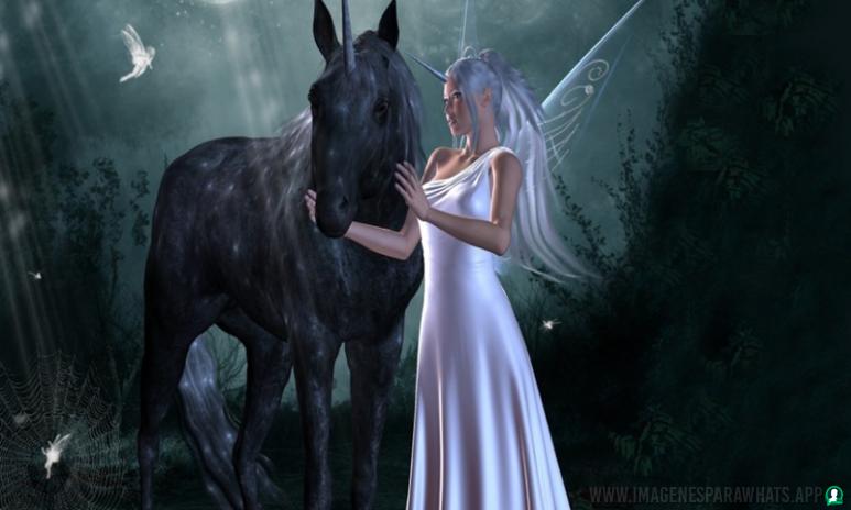 Imagenes-de-unicornios-41