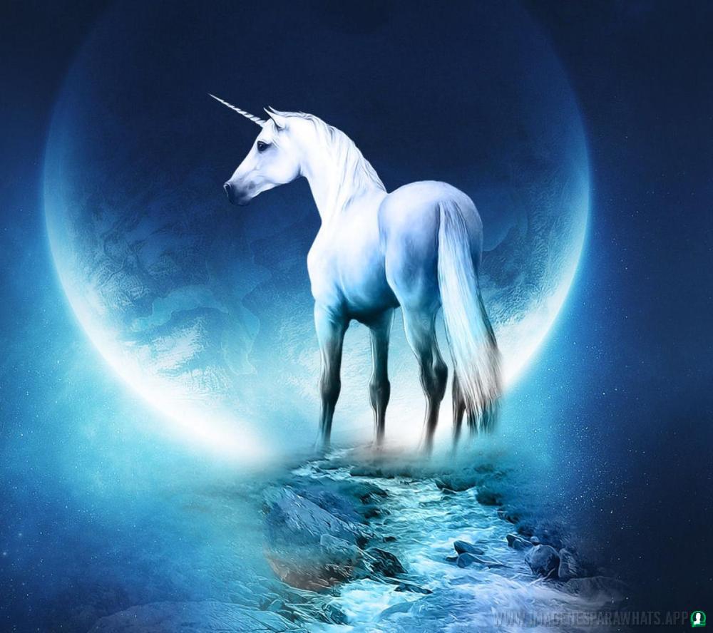 imagenes-de-unicornios (34)