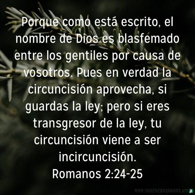 imagenes-frases cristianas-(www.imagenesparawhats.app). (1545)