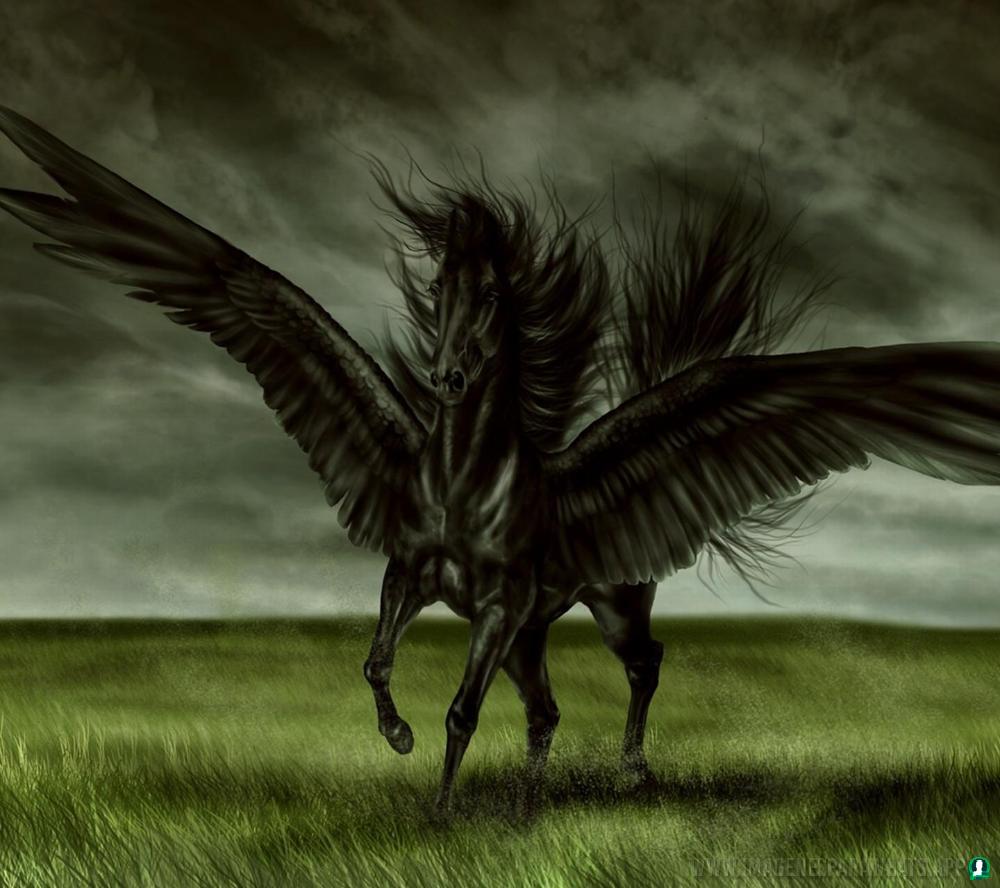 Imagenes-de-unicornios-2