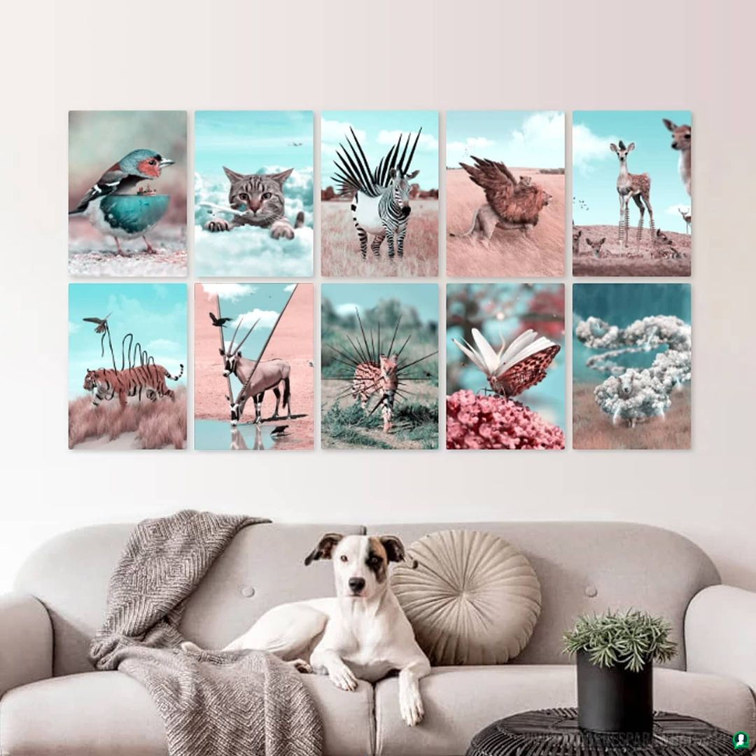 imagenes de animales whatsapp (165)