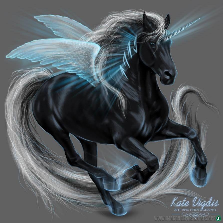 imagenes-de-unicornios (42)
