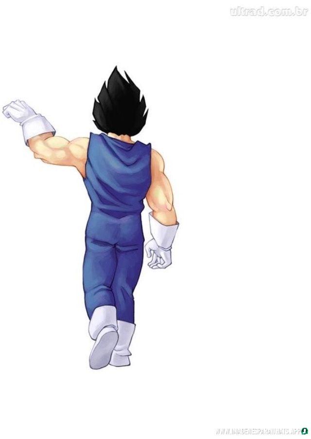Imagenes de Dragon Ball (1017)