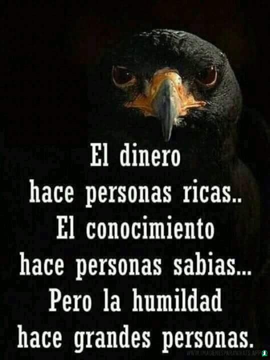 Imagenes-de-humildad-96