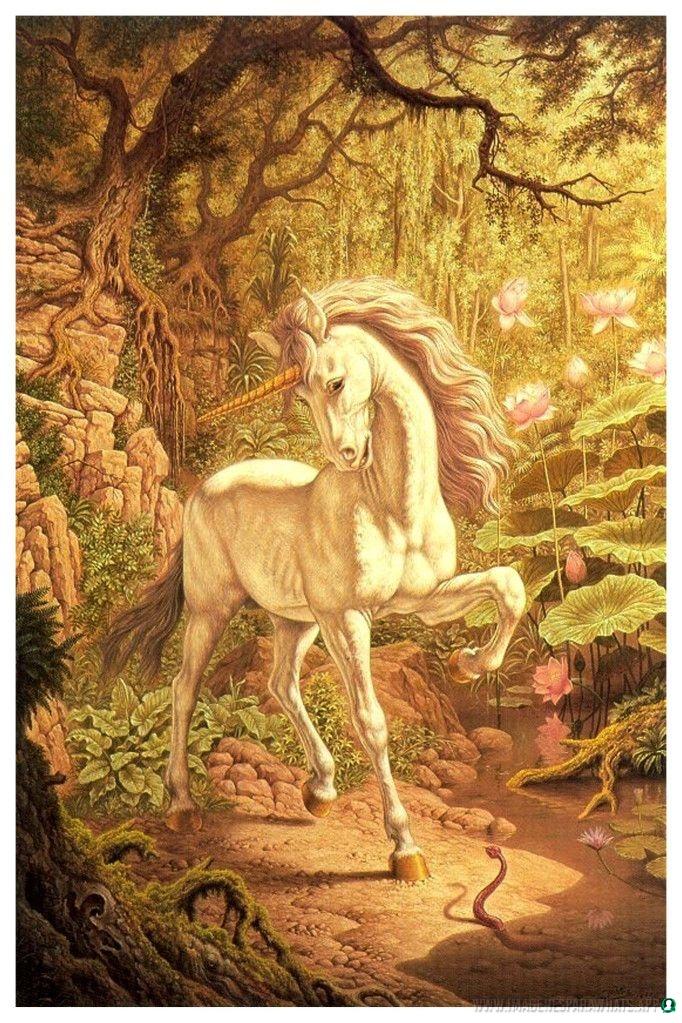imagenes-de-unicornios (39)