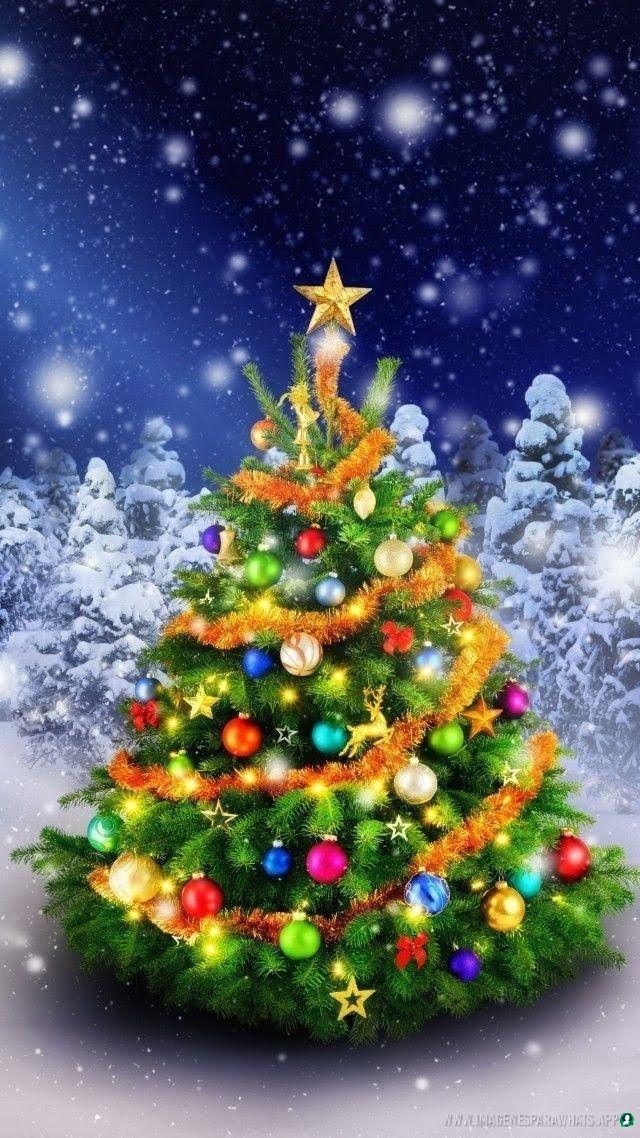 imagenes de navidad (679)