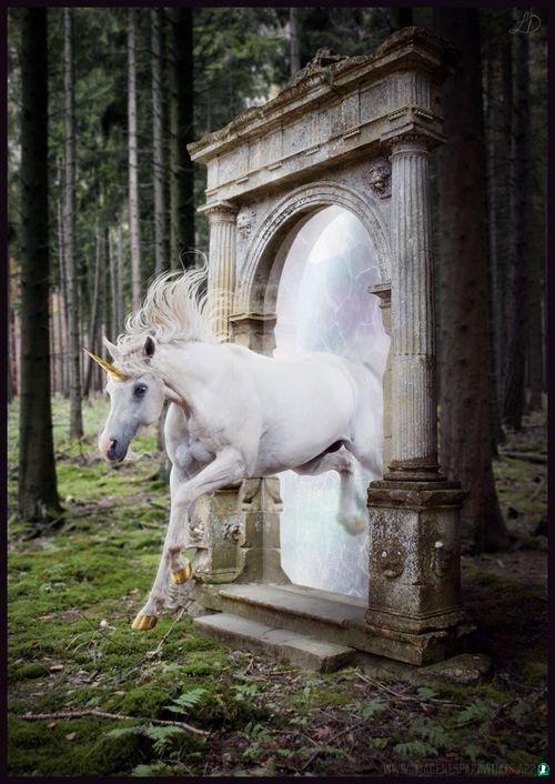 Imagenes-de-unicornios-13