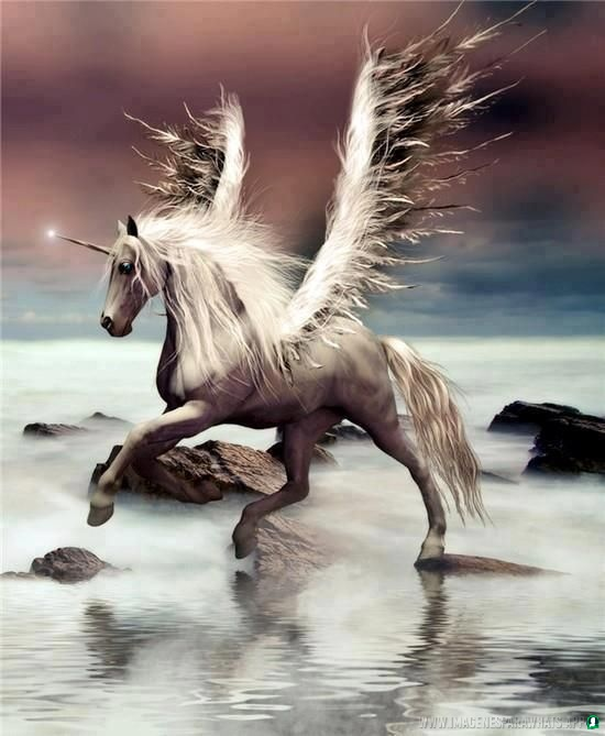 Imagenes-de-unicornios-93