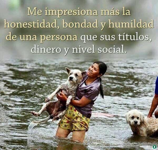 Imagenes-de-humildad-44