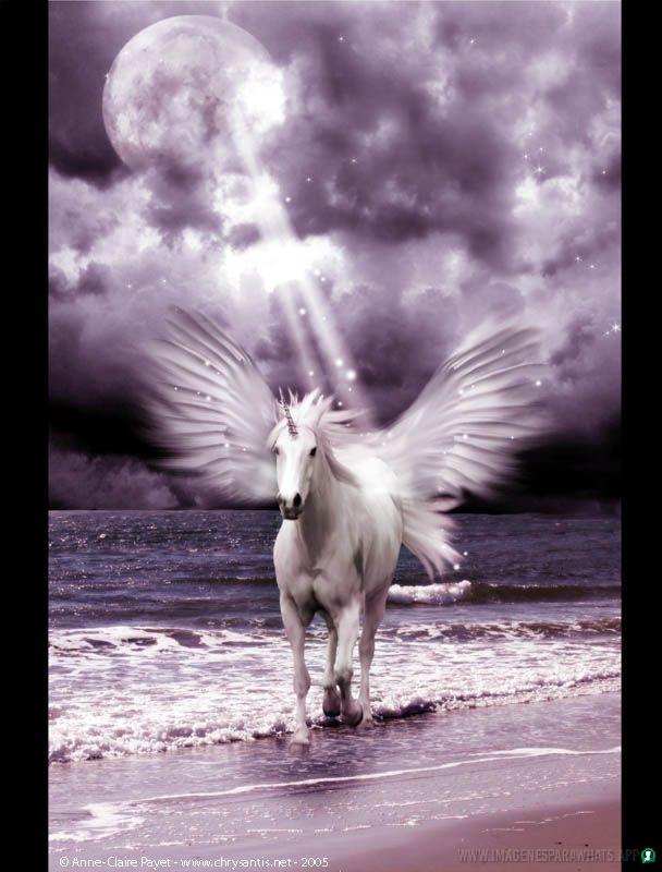 imagenes-de-unicornios (51)