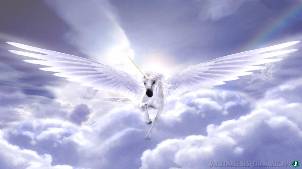 imagenes-de-unicornios (4)