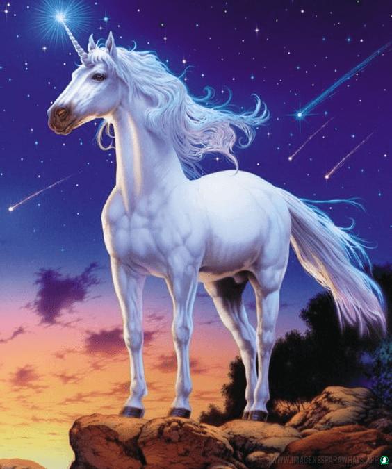 imagenes-de-unicornios (5)
