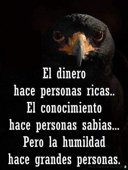 Imagenes-de-humildad-41